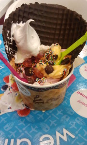 A Menchie's Treat. Click photo for full size.