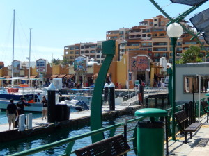 A View from the Cabo Pier. Click photo for full size.