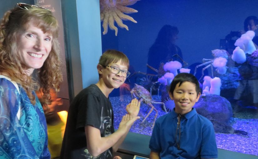 Field trip to the Aquarium of the Pacific